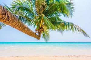 tropisch strand met palmbomen