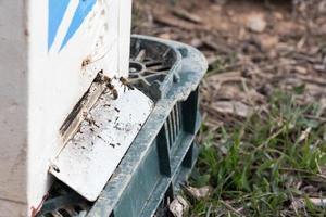 bijen vliegen in een bijenkorf