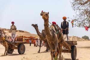 Rajasthan, India 2018- mannen rijden in koetsen op kamelen door woestijnzand