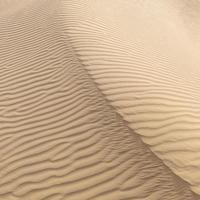 prachtige zandduin in de thar woestijn, jaisalmer, rajasthan, india foto