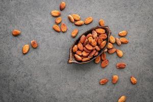 cacaobonen in een gerecht foto