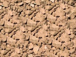 patch van droge en gebarsten grond voor achtergrond of textuur