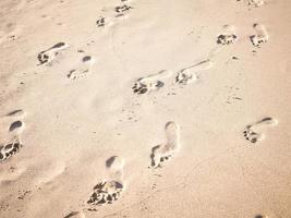 voetafdrukken in zand op een strand foto