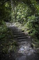 wildernislandschap in peru foto