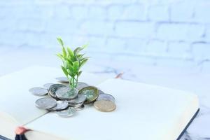 close-up van jonge plan groeien door middel van munten foto