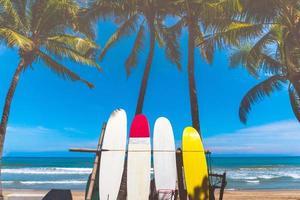 veel surfplanken naast kokospalmen bij zomerstrand met zonlicht en blauwe hemel foto