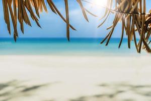 tropisch strand met lichtblauwe hemelachtergrond