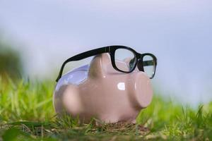 roze spaarvarken met bril op gras onder blauwe hemel foto