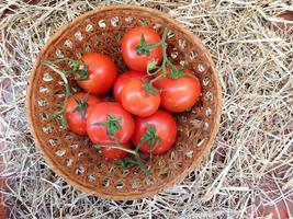 tomaten in een rieten mand op een achtergrond van hooi of stro foto