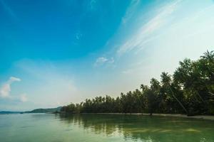 paradijselijk eiland met strand en zee
