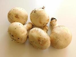 vijf witte champignons op een beige tabelachtergrond