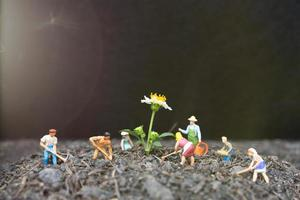 miniatuur tuinders die zorgen voor groeiende planten in het veld, milieuconcept