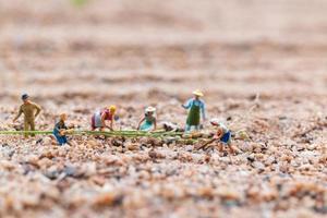 miniatuurboeren die op een perceel in de woestijn, landbouwconcept werken