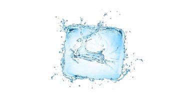 water splash met de vorm van een hert geïsoleerd op een witte achtergrond foto