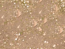 patch van rotsachtige grond voor achtergrond of textuur foto