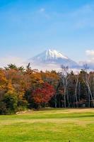 landschap op mt. fuji, yamanashi, japan