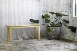 bankje en kamerplant in betonnen kamer