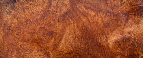 natuurlijke burl houtstructuur achtergrond