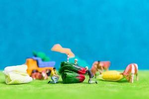 miniatuurboeren die groenten oogsten, landbouwconcept