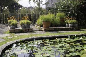 mooie tuin met vijver foto
