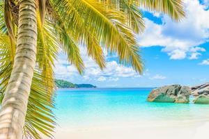 prachtige tropische strand achtergrond