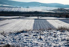 besneeuwde velden en landschap foto