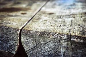 close-up van hout foto