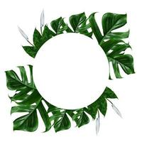tropisch groen blad frame op een witte achtergrond foto