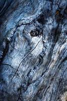 oud donker hout