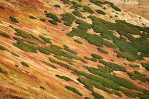 kleurrijke herfst berghellingen foto