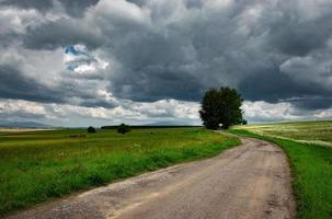 landschap met grijze zware wolken en weiland foto