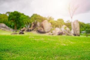gericht groen gras in de tuin van de golfbaan foto