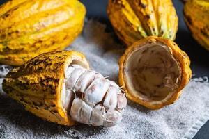 close-up van cacaovruchten foto