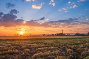 zonsondergang gloed op een veld foto