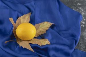 een gele rijpe citroen op een gedroogd blad