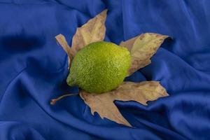 een groene rijpe citroen op een gedroogd blad