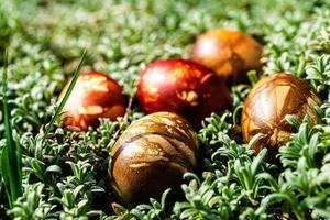 veelkleurige paaseieren in groen gras foto