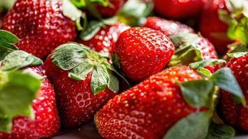 verse rijpe perfecte aardbeien foto