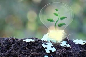 energiebesparende gloeilamp en bedrijfs- of bedrijfsgroeiconcept foto