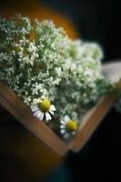 close-up van open boek met wilde bloemen foto