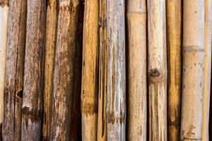 houten plank achtergrond foto