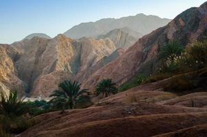 berglandschap met palmbomen
