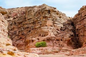 canyon gedurende de dag foto