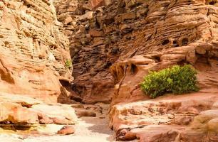 Egyptische rotsachtige woestijn foto