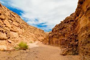 Egyptische canyon in een woestijn foto