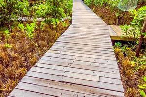 houten pad om te wandelen