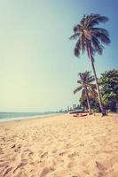 palmboom op het strand