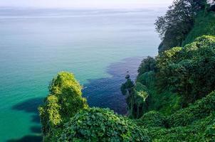 weelderig landschap aan zee foto