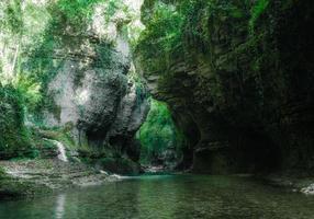 groen bos met een beek foto