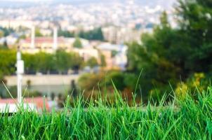 gras en stad